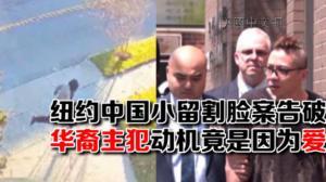 白石镇小留学生遭割脸案两嫌犯落网 华裔主犯因爱生恨买凶伤人