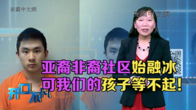 """开口不凡:亚裔少年捅死非裔或入狱60年 爆发""""挺杨""""示威"""