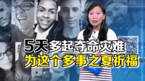 开口不凡:美国连环血案!中国客命丧轮下 男童惨遭鳄鱼吞
