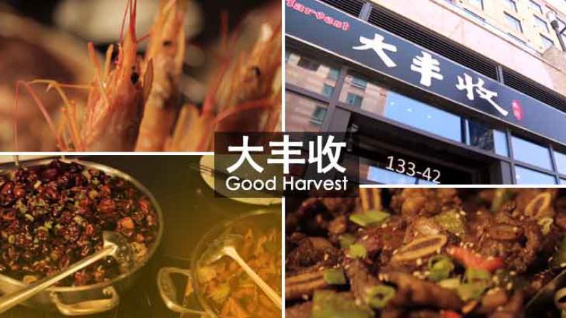 红遍中国的脆鱼锅来啦,只此一家!