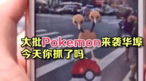 热门手机游戏吸引玩家周末聚集华埠