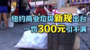 纽约市商业垃圾回收新规本月起生效 违者将罚300元