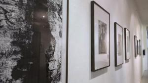 大自然的笔墨 王久安个展456画廊开幕