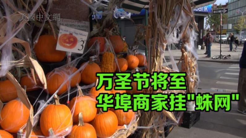 """华埠万圣节气氛渐浓 商家""""挂蛛网""""吸引客流"""