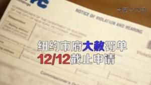 """市财政局法拉盛宣传""""大赦罚单""""项目 12/12申请截止"""