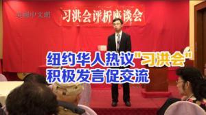 """纽约和统会座谈热议""""习洪会"""" 两岸华人积极发言促交流"""