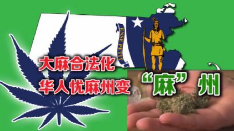 """大麻合法化 华人忧麻州变""""麻""""州"""