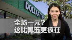 假期前的疯狂  一元店Dollar Tree三季度股价超预期