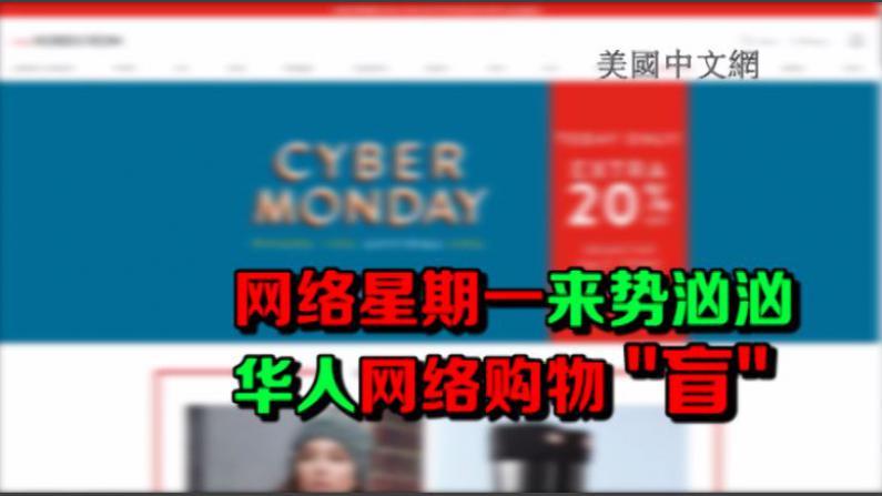 """网络星期一来势汹汹 华人网络购物""""盲"""""""