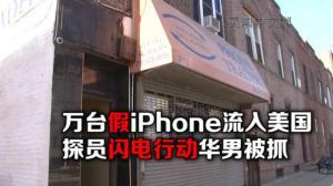 华男涉嫌卖假手机被捕 涉案金额超千万