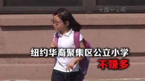 纽约布鲁克林东纽约拟新建公立小学        家长盼更多公校能走进华裔社区