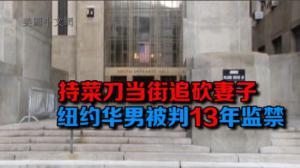 持刀当街追砍妻子 华男被判13年监禁