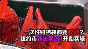 免费一次性购物袋将成历史 纽约新法案2月开始实施