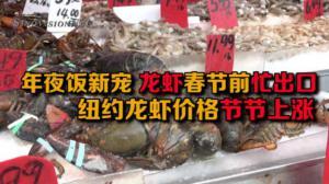 龙虾成年夜饭新宠 春节前忙出口  纽约龙虾价格节节上涨