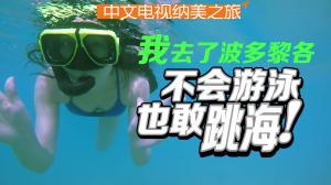 中文电视纳美之旅节目:波多黎各海底游