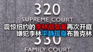 震惊纽约的李林溺女案再次开庭 嫌犯李林平静出席