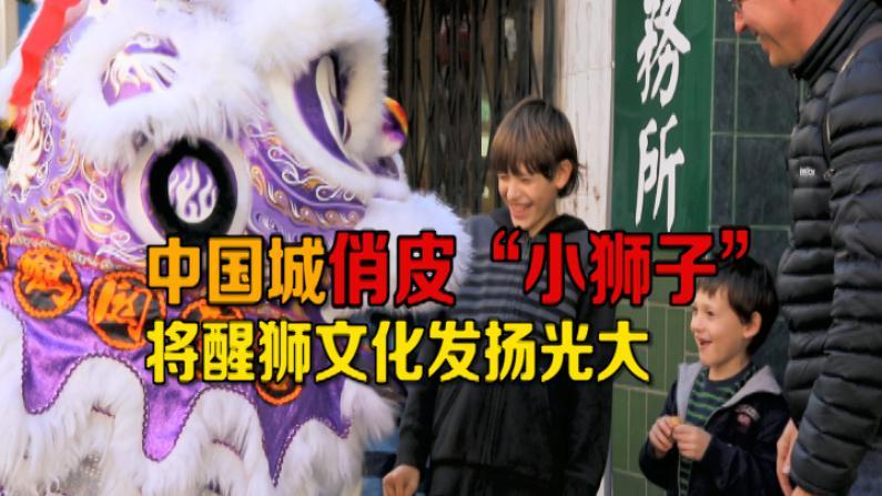 """醒狮贺新春 旧金山中国城俏皮小狮子""""闹""""上金门桥"""