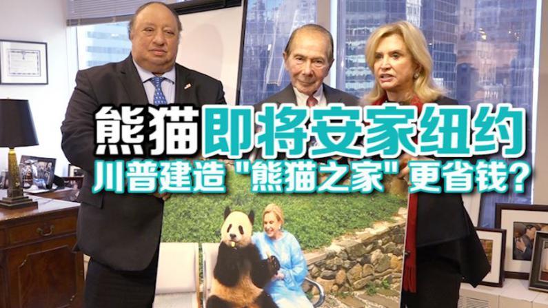 国会议员纽约开记者会为引进熊猫筹款 盼川普团队加入降低项目成本