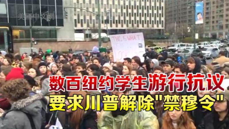 爆发!数百纽约学生游行抗议川普