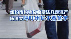 纽约市购物袋收费法遭州议会暂缓  购物袋征收5分钱恐成一纸空文