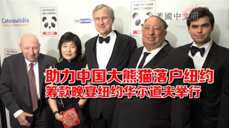 """助力中国大熊猫落户纽约 """"黑与白""""熊猫筹款晚宴纽约华尔道夫举行"""