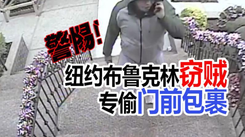 纽约布鲁克林窃贼 专偷门前包裹