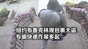 纽约布鲁克林贝瑞吉包裹窃案猛增 警方呼吁民众协助捉拿两嫌犯
