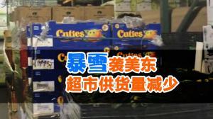 暴雪袭美东 超市供货量减少