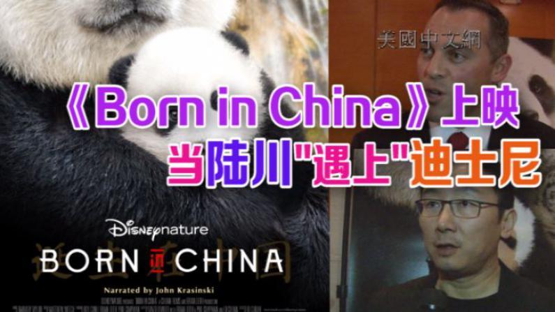 《我们诞生在中国》美国上映  中美主创团队揭秘拍摄体会
