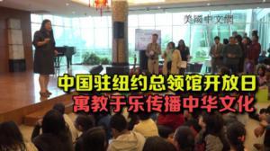 中国驻纽约总领馆开放日 寓教于乐游戏项目传播中华文化