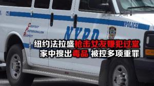 纽约法拉盛枪击女友嫌犯过堂  被控多项重罪