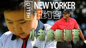 "《HELLO纽约客》探访""小老虎""集训营"