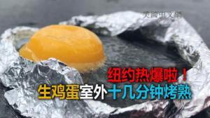纽约市今日持续高温 生鸡蛋户外十分多钟烤熟