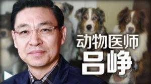 吕峥:动物疫情严加防范