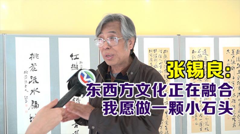 张锡良:东西方文化正在融合 我愿做一颗小石头