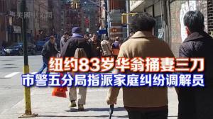 纽约市警五分局中华公所召开警民会  将指派多语言家庭纠纷调解员