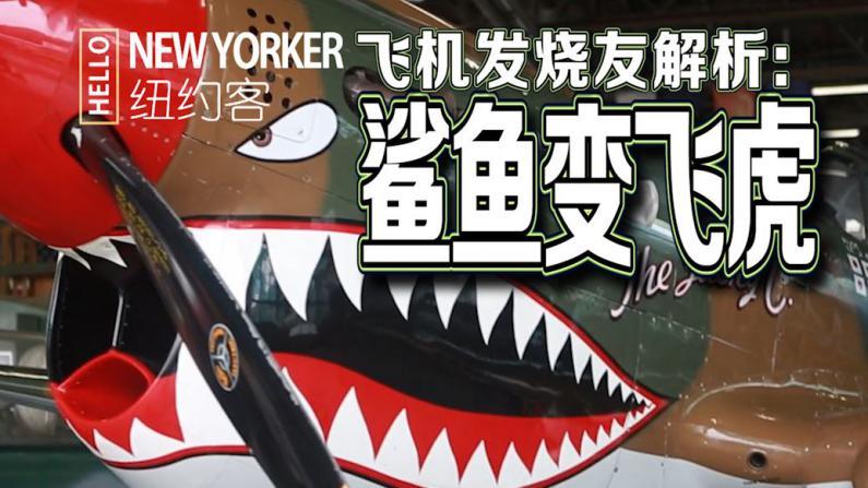 "HELLO纽约客:鲨鱼秒变""飞虎"""