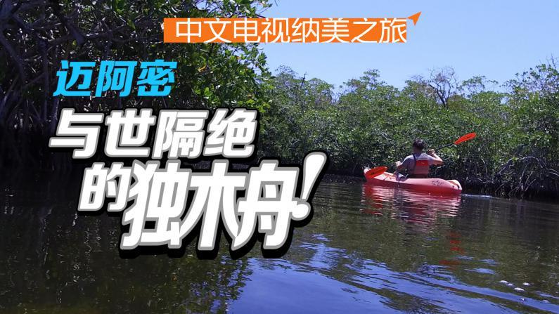 迈阿密:野生动物和独木舟