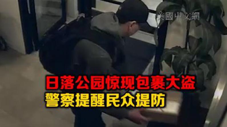 纽约日落公园包裹窃贼出没 警方呼吁民众警惕