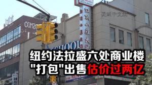 """纽约法拉盛六处商业楼 """"打包""""出售估价过两亿"""