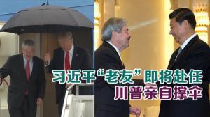 """习近平""""老友""""即将赴任 川普亲自撑伞"""