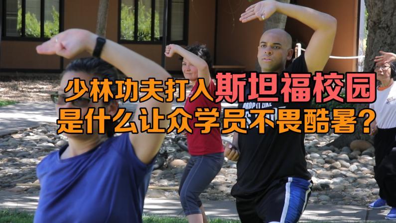 少林功夫打入斯坦福校园 是什么让大家坚持练拳不畏酷暑?