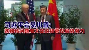 习近平会见川普:就朝核问题加大促谈和管控局势努力