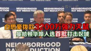 白思豪拨款3200万强力灭鼠 曼哈顿华埠入选首批打击区域