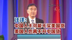 汪洋:中国人不可能不买美国货 美国人也离不开中国货