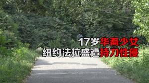 17岁华裔少女  纽约法拉盛遭持刀性侵