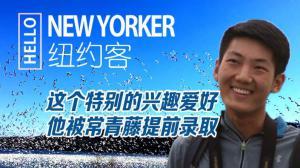HELLO纽约客:爱鸟少年如何进藤校