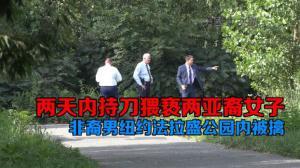 两天内持刀猥亵两亚裔女子 非裔男纽约法拉盛公园内被擒