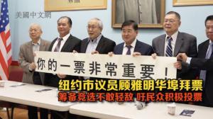 纽约市议员顾雅明华埠拜票 吁华裔选民积极投票 望成功连任
