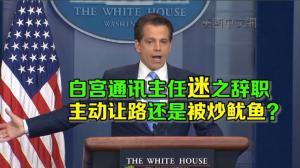 白宫通讯主任上任10天就辞职 白宫内乱?川普:不存在的!